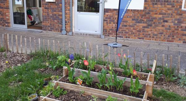 les Nouvelles plantations faites par les jardiniers bénévoles et participatifs de l'association du Secours Catholique