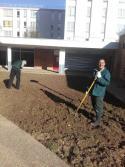 Préparation du terrain du patio par les jardiniers en formation