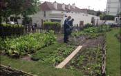 jardin partagé Bernard de Jussieu/Versailles